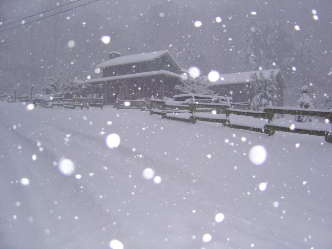 Photo - snow falls at Foxfire Cabin in Waynesville, NC.